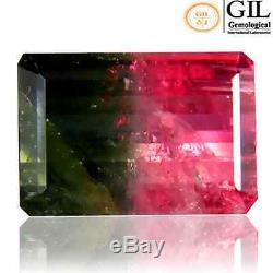 7.05 cts GIL-Certified Natural Octagon-cut Watermelon/Green&Pink VVS2 Tourmaline