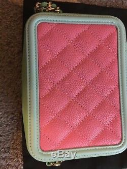Authentic Chanel bag, wallet, purse BNWT custom boutique pastel pink, green $3000