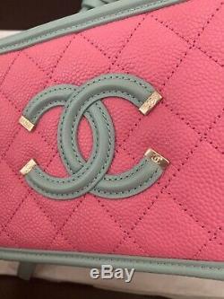 Chanel Rose, Vert Et Bleu Caviar Mini Filigrane Vanity Case Bag